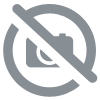 Europla - Click-Delays BACK COVER (Tapa Trasera) 1/450